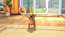 Pantalla PlayStation Vita Pets