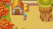 Pantalla Harvest Moon DS