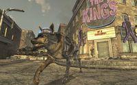 Bethesda recalls the saga dogs Fallout