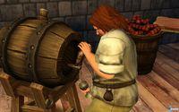 Pantalla The Sims: Medieval