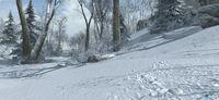 Pantalla Assassin's Creed III