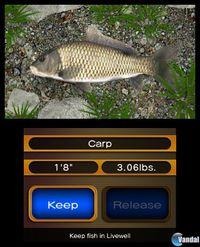 Pantalla Reel Fishing Paradise 3D
