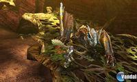 Imagen Monster Hunter 4