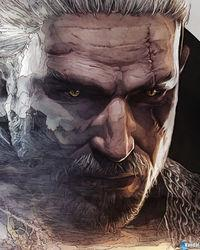 Displayed illustrations They decorate the 'steelbooks' The Witcher 3