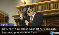 Pantalla Phoenix Wright: Ace Attorney - Dual Destinies