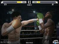 Imagen Real Boxing