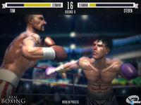 Pantalla Real Boxing