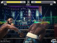 Vivid Games presenta Real Boxing