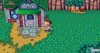 Pantalla Animal Crossing: Let's Go To The City