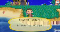 Imagen Animal Crossing: Let's Go To The City