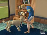 Pantalla Los Sims 2 Mascotas