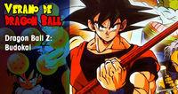 Verano de Dragon Ball: Dragon Ball Z: Budokai