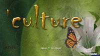 Culture XBLA