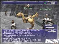 Pantalla Final Fantasy XI