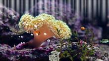 Imagen 4 de Aquarium Sandbox