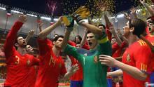 Imagen 55 de Copa Mundial de la FIFA Sudáfrica 2010