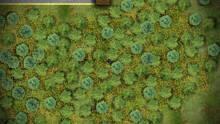 Imagen 5 de Battlegrounds2D.IO