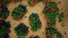 Imagen 3 de Tank Blazers
