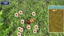 Imagen 1 de Ant Nation WiiW