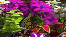 Imagen 8 de My Garden