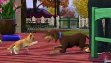 Imagen 18 de Los Sims 3 ¡Vaya fauna!