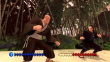Imagen Karateka