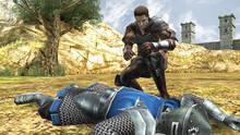 Imagen 11 de Valhalla Knights 3