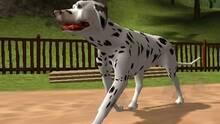 Imagen Dog's Life