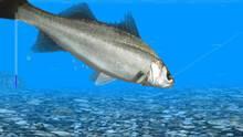Imagen 4 de Reel Fishing Ocean Challenge WiiW