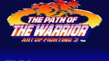 Imagen 2 de The Path of the Warrior Art of Fighting 3 CV