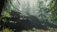 Imagen 67 de The Forest
