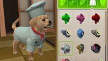 Imagen 5 de PlayStation Vita Pets: Sala de cachorros