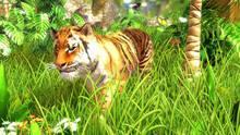 Imagen 3 de Wildlife Park 3