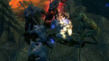 Imagen 29 de Champions of Norrath - Realms of Everquest