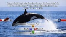 Imagen 2 de NGQ! Wild Life