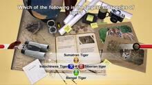 Imagen 3 de NGQ! Wild Life