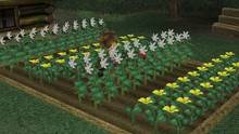 Imagen 10 de Harvest Moon: A Wonderful Life