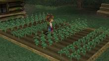 Imagen 15 de Harvest Moon: A Wonderful Life