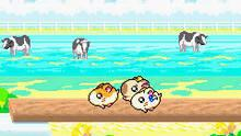 Imagen 10 de Hamtaro: Rainbow Rescue