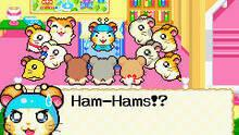 Imagen 3 de Hamtaro: Rainbow Rescue