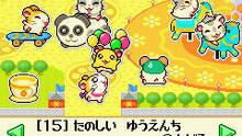 Imagen 6 de Hamtaro: Rainbow Rescue