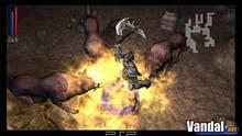 Imagen 7 de Untold Legends: Brotherhood of the Blade