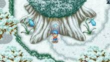 Imagen 10 de Harvest Moon DS