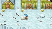 Imagen 9 de Harvest Moon DS