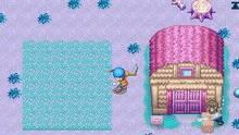 Imagen 7 de Harvest Moon DS