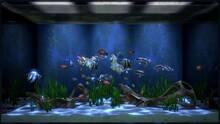 Imagen 1 de Aqua TV eShop
