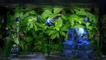 Imagen 3 de Aqua TV eShop