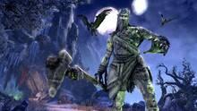 Imagen 227 de The Elder Scrolls Online