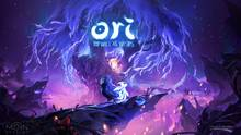 Imagen 16 de Ori and the Will of the Wisps
