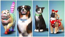 Imagen 4 de Los Sims 4: Perros y Gatos